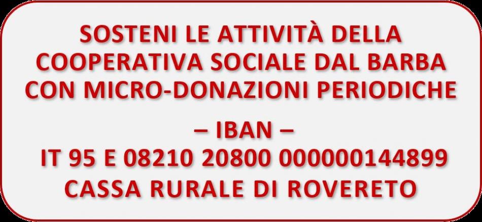Micro-donazione